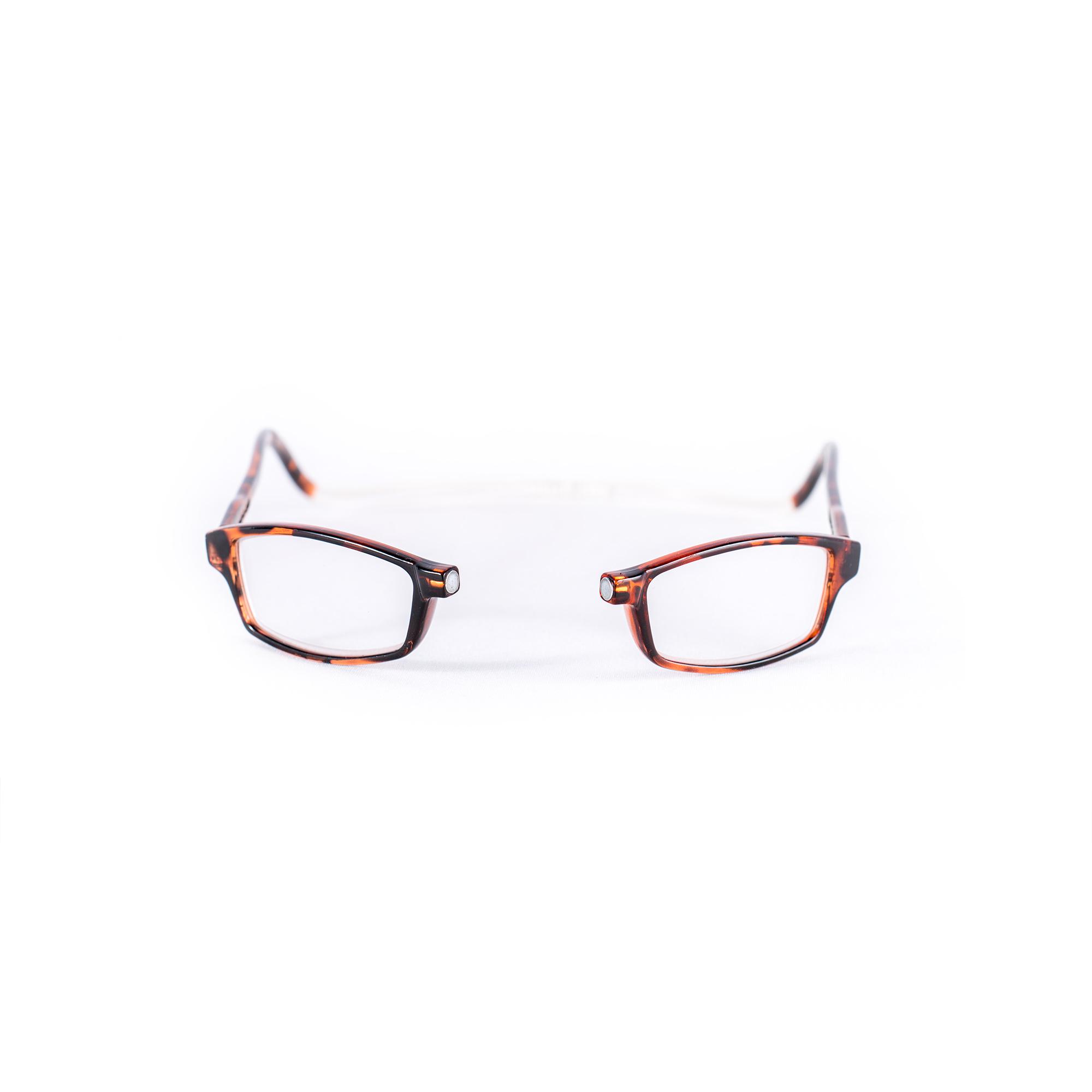 Easy Reader magneetleesbril leesbril met magneetsluiting square turtle