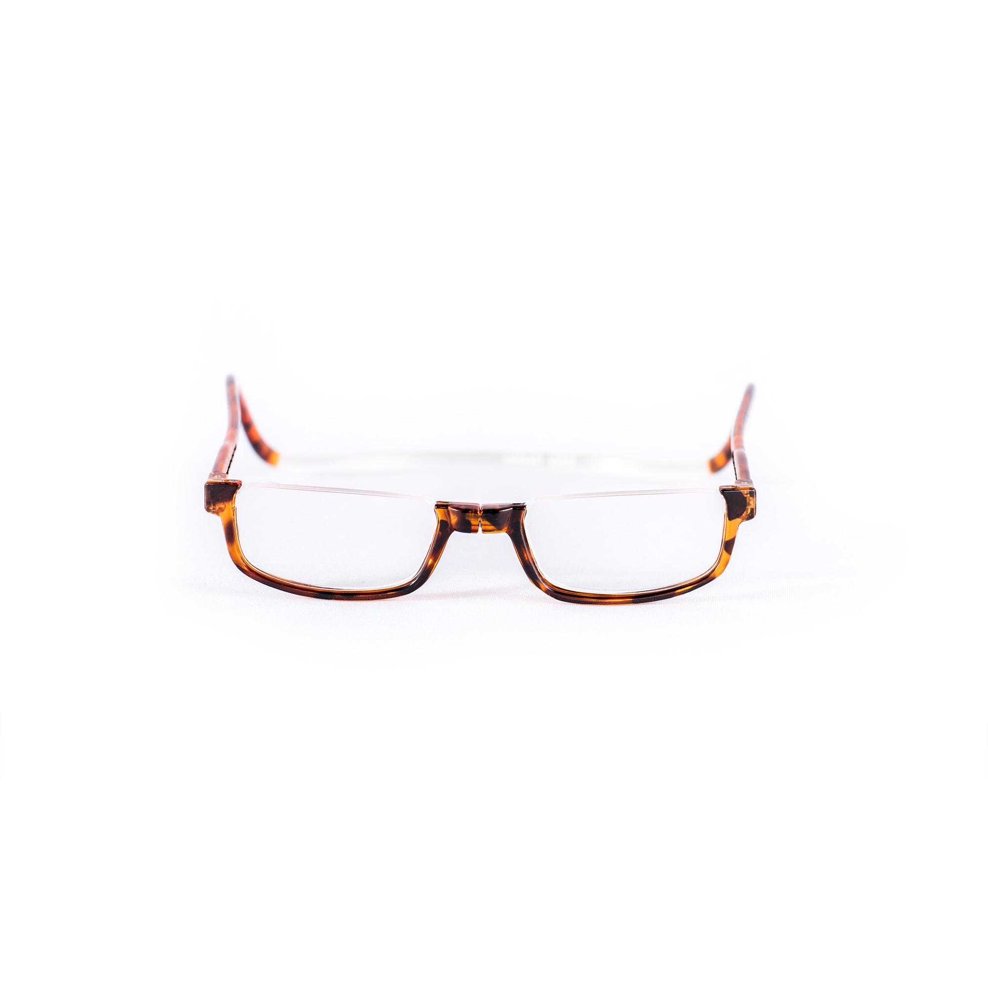 Easy Reader magneetleesbril leesbril met magneetsluiting halfrond turtle