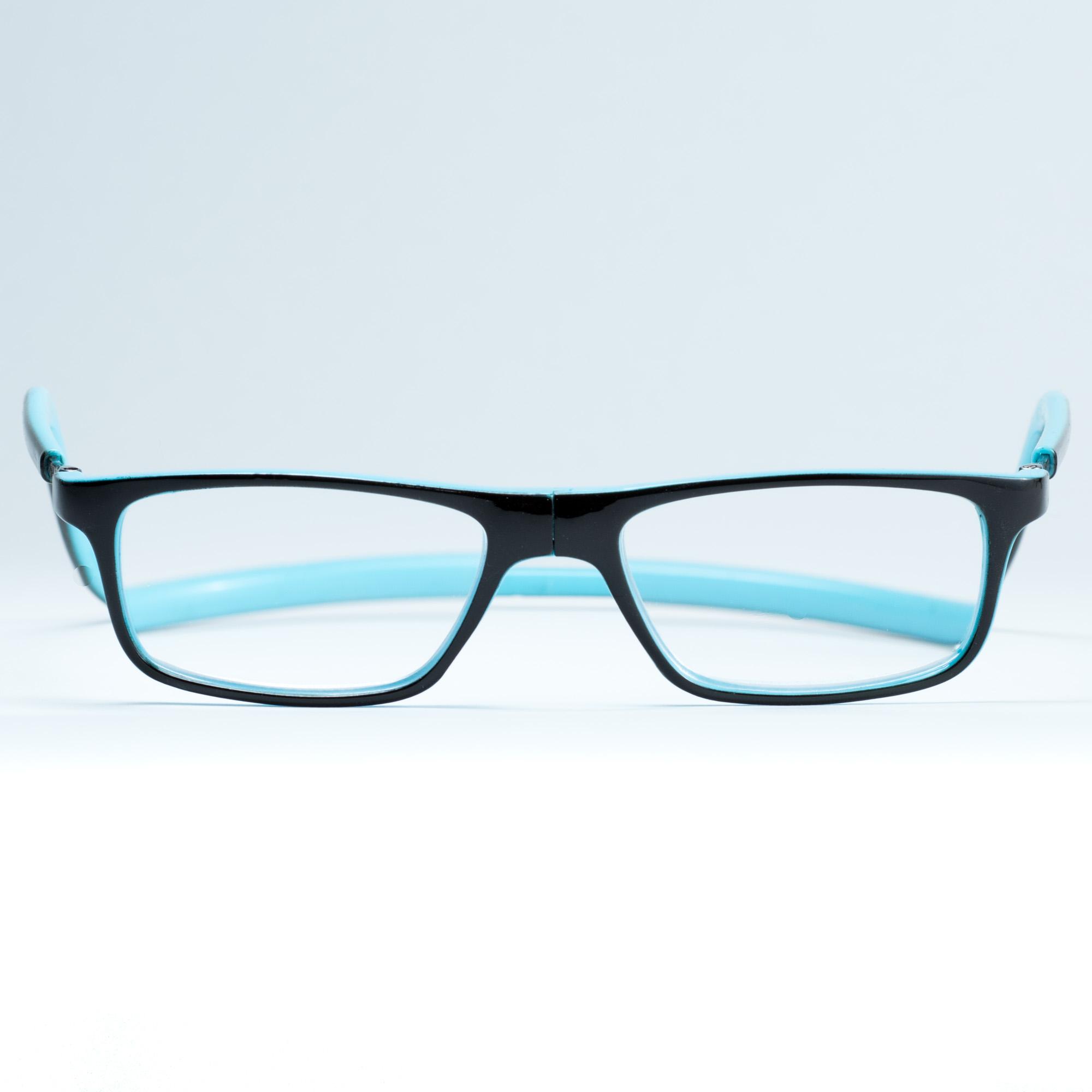 Easy Reader magneetleesbril leesbril met magneetsluiting model sam bruin/blauw