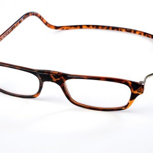 Easy Reader magneetleesbril leesbril met magneetsluiting Classic XL turtle